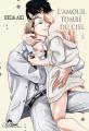 Couverture L'amour tombé du ciel Editions IDP (Hana) 2020