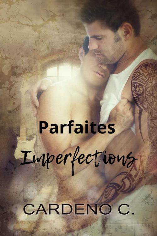 Couverture Parfaites imperfections