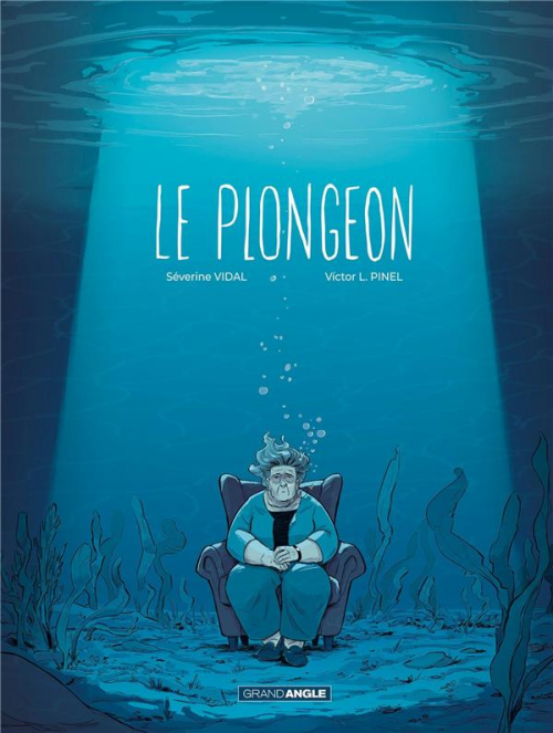 Couverture Le plongeon