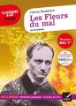 Couverture Les fleurs du mal / Les fleurs du mal et autres poèmes Editions Hatier (Classiques & cie - Lycée) 2020