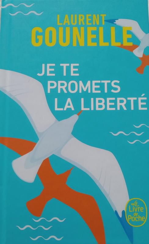 Couverture Je te promets la liberté