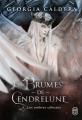 Couverture Les Brumes de Cendrelune, tome 3 : Les ombres célestes Editions J'ai Lu 2021