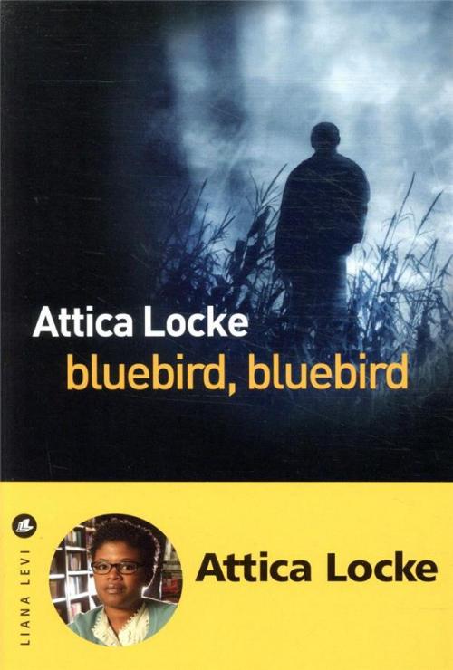 Couverture Bluebird, bluebird