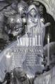 Couverture Fables, tome HS : 1001 nuits de neige Editions DC Comics (Vertigo) 2006