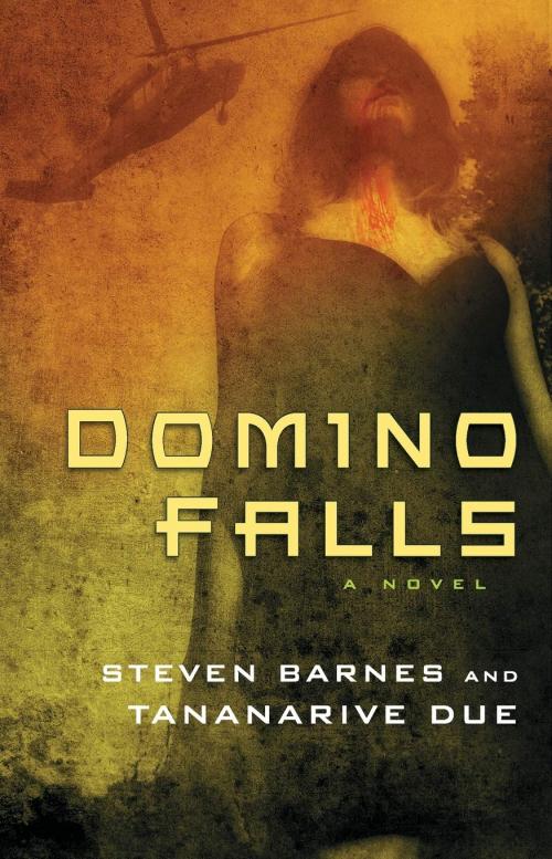 Couverture Domino Falls