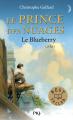 Couverture Le Prince des nuages, tome 1 Editions Pocket (Jeunesse - Best seller) 2014