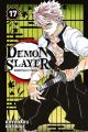 Couverture Les rôdeurs de la nuit / Demon Slayer, tome 17 Editions Panini (Manga - Shônen) 2021