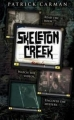 Couverture Skeleton Creek, tome 1 : Psychose Editions Scholastic 2009