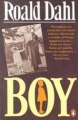 Couverture Moi, Boy Editions Penguin books 1986