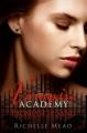 Couverture Vampire Academy, tome 4 : Promesse de sang Editions Castelmore 2011