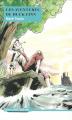 Couverture Les aventures d'Huckleberry Finn / Les aventures de Huckleberry Finn Editions Drôles de... 2016