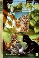 Couverture La guerre des clans (BD) : Etoile du tigre et Sacha, tome 3 : Retour aux clans Editions HarperCollins 2009