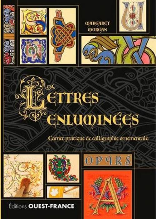 Couverture Lettres enluminées : Carnet pratique de calligraphie ornementale