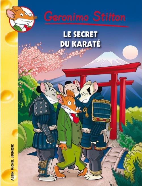 Couverture Le secret du karate
