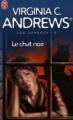 Couverture Les Jumeaux, tome 2 : Le Chat noir Editions J'ai lu 2006