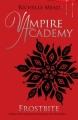 Couverture Vampire Academy, tome 2 : Morsure de glace Editions Razorbill 2009
