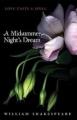 Couverture Le songe d'une nuit d'été Editions HarperTeen 2011