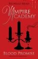 Couverture Vampire Academy, tome 4 : Promesse de sang Editions Razorbill 2010