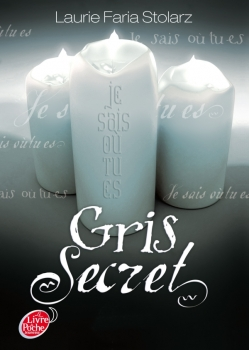Couverture Bleu cauchemar, tome 3 : Gris secret