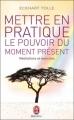 Couverture Mettre en pratique le pouvoir du moment présent Editions J'ai Lu (Bien-être) 2011