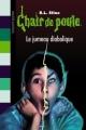 Couverture Le jumeau diabolique Editions Bayard (Poche) 2010