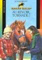 Couverture Au revoir, Tornade ! Editions Bayard (Poche) 2002