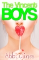 Couverture The Vincent Boys, tome 1 : Un garçon de trop Editions CreateSpace 2012