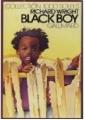 Couverture Black boy Editions Gallimard  (1000 soleils) 1947