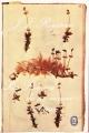 Couverture Les Rêveries du promeneur solitaire / Rêveries du promeneur solitaire Editions Le Livre de Poche (Classique) 1972