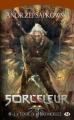 Couverture Sorceleur, tome 6 : La tour de l'hirondelle Editions Milady 2012
