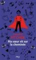 Couverture Ma soeur vit sur la cheminée Editions Pocket (Jeunesse) 2012