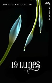 Couverture Chroniques des enchanteurs, tome 4 : 19 lunes