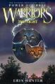 Couverture La guerre des clans, cycle 3 : Le pouvoir des étoiles, tome 1 : Vision Editions HarperCollins 2008