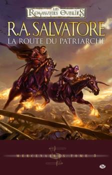 Couverture Les Royaumes Oubliés : Mercenaires, tome 3 : La Route du Patriarche