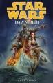 Couverture Star Wars (Légendes) : La Genèse des Jedi, tome 1 : L'éveil de la Force Editions Dark Horse 2012