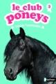 Couverture Le club des poneys, tome 03 : Tornado l'indomptable Editions Nathan 2012