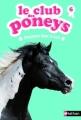 Couverture Le club des poneys, tome 06 : Cheyenne dans la nuit Editions Nathan 2013