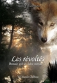 Couverture Demain est un autre monde, tome 2 : Les révoltés Editions Val Sombre 2013