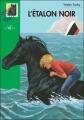 Couverture L'étalon noir Editions Hachette (Bibliothèque Verte) 2003