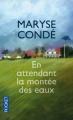 Couverture En attendant la montée des eaux Editions Pocket 2013