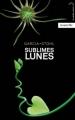 Couverture Chroniques des enchanteurs, tome 2.5 : Sublimes Lunes Editions Hachette (Black Moon) 2013